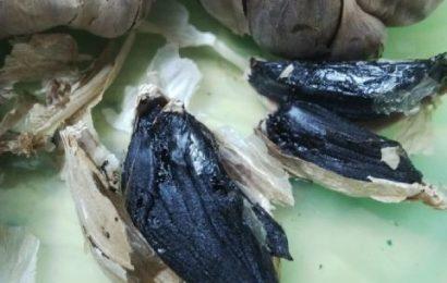 Cách làm tỏi đen bằng nồi cơm điện vô cùng đơn giản
