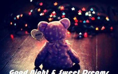 Những tin nhắn chúc ngủ ngon hay dành tặng gấu