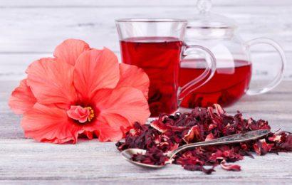 Cách ngâm rượu atiso ngon để điều trị bệnh cao huyết áp