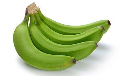 Bật mí những tác dụng của quả chuối xanh đối với sức khỏe con người