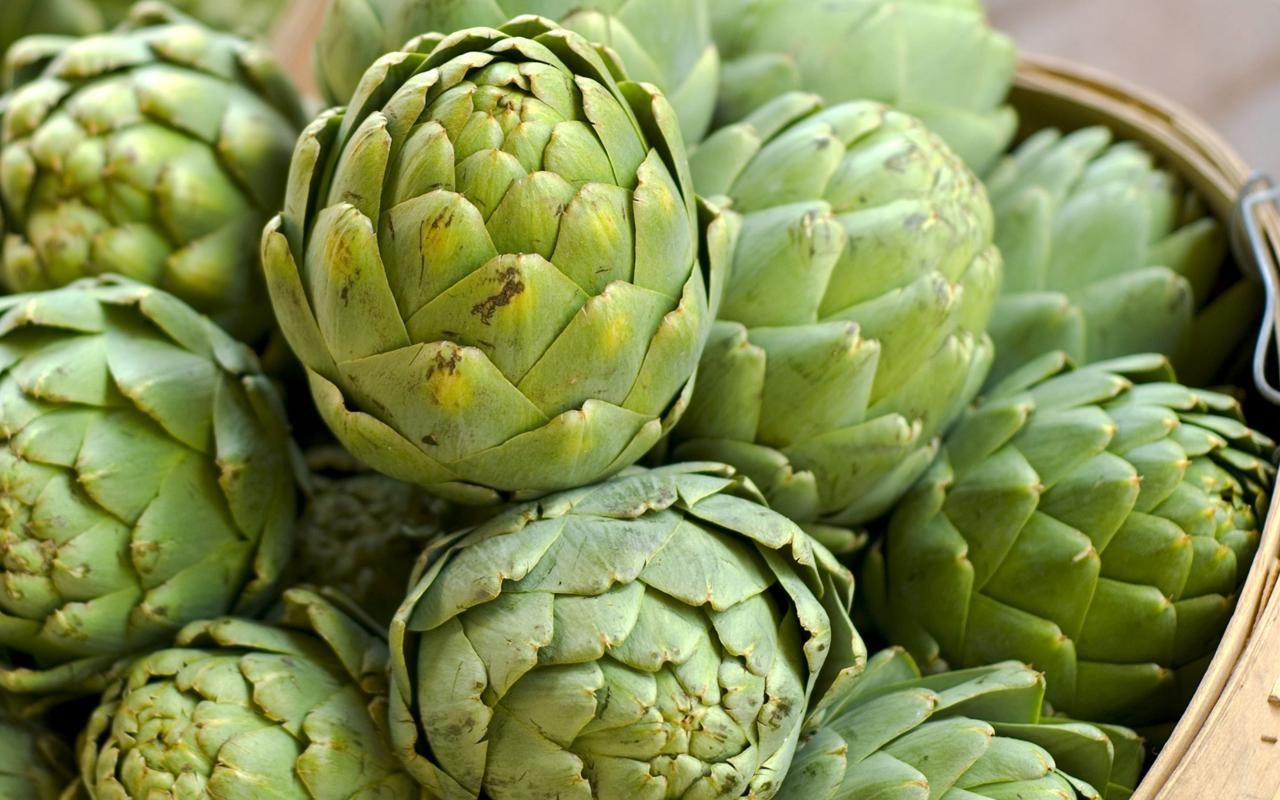 Tác dụng của hoa atiso xanh ngâm rượu