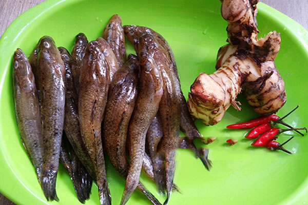 Các nguyên liệu làm cá bống kho tộ