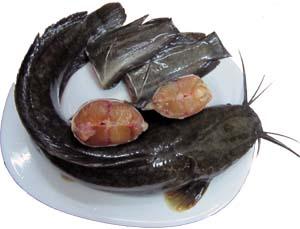 cách làm cá trê kho tiêu