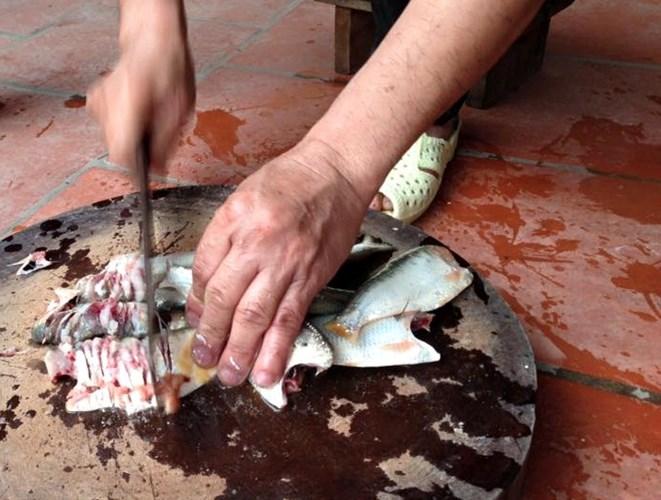 Cách làm chả cá mòi
