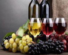Bật mí những tác dụng rượu nho ngâm rượu trên cả tuyệt vời