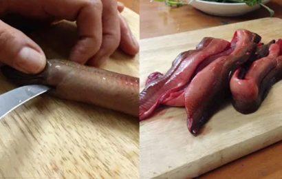 Cách làm thịt lươn nấu cháo nhanh mà không tanh