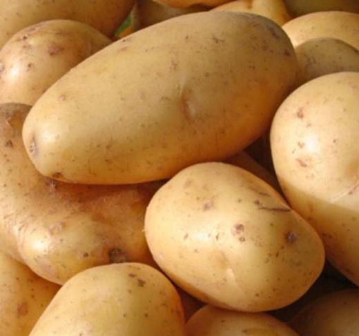 Cách làm sinh tố khoai tây
