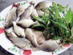 Cách kho cá diếc với dưa