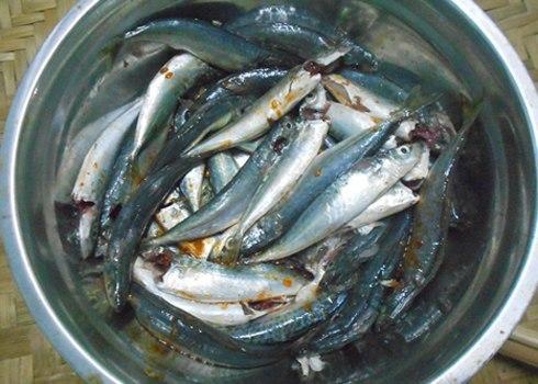 Cách kho cá nục giống như cá hộp
