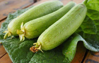 Bạn có biết tác dụng của mướp hương đối với sức khỏe?
