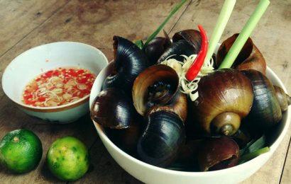 Giới thiệu các món ăn từ ốc bươu vàng mà bạn nên biết