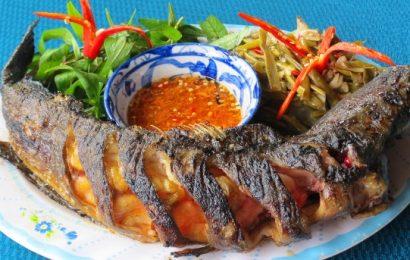 Cá nướng bằng lò vi sóng nóng hổi thơm nồng đậm vị