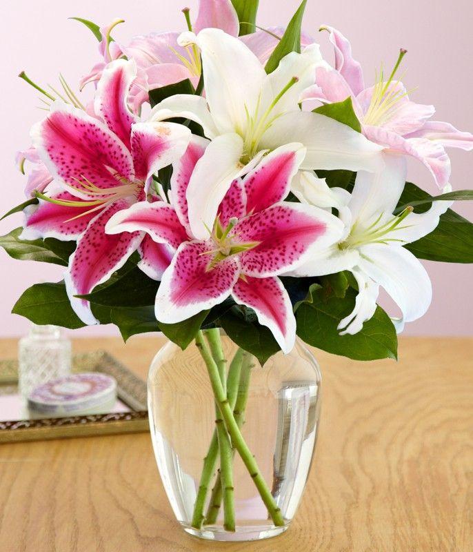 hướng dẫn cắm hoa ly
