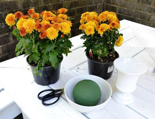 cách cắm hoa cúc để bàn