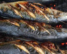 Giải đáp câu hỏi cách tẩm ướp cá để nướng cực ngon khó mà cưỡng lại
