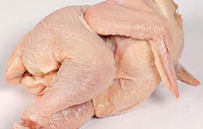 Tìm hiểu 2 món ngon với thịt gà công nghiệp, xóa bỏ định kiến gà công nghiệp