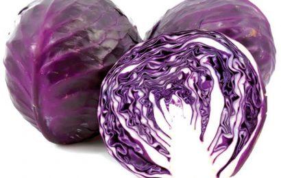 Cùng Em vào bếp khám phá bắp cải tím có tác dụng gì nào?