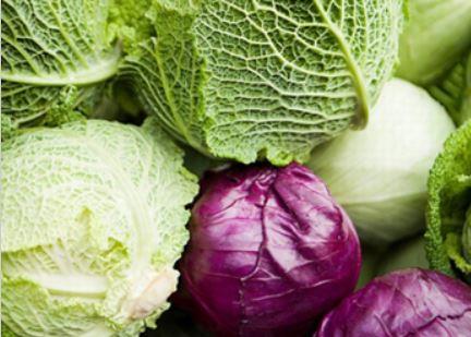 giảm cân với bắp cải luộc 1
