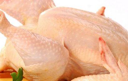 Cùng Emvaobep tìm hiểu xem thịt gà công nghiệp có tốt không