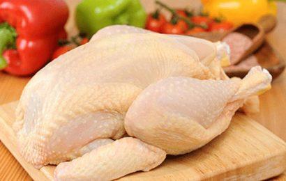 Thịt gà tươi: cách chọn thịt gà tươi ngon và bảo quản thịt gà tươi đúng cách