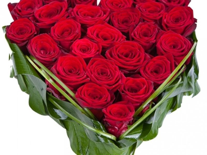 Hướng dẫn cách cắm hoa hồng đỏ đơn giản mà đẹp