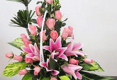 Cách chọn những lãng hoa hồng đẹp tặng sinh nhật