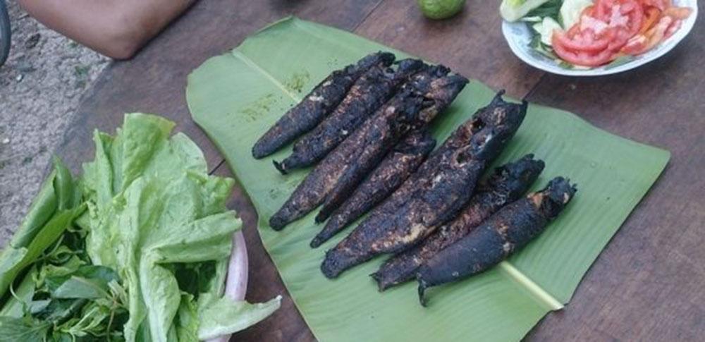 cá lóc nướng cuốn bánh tráng 2