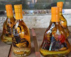 Tác dụng của bọ cạp ngâm rượu trị bách bệnh