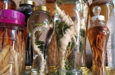 Cách làm các loại thảo dược ngâm rượu cho các quý ông