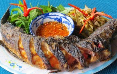 Chia sẻ tất tần tật các món ngon từ cá măng