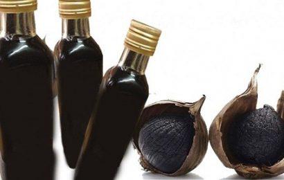 Ngâm rượu tỏi đen dễ uống chữa nhiều bệnh có lợi cho sức khỏe