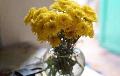 Hướng dẫn cách cắm hoa cúc để bàn thờ sao cho chuẩn nhất