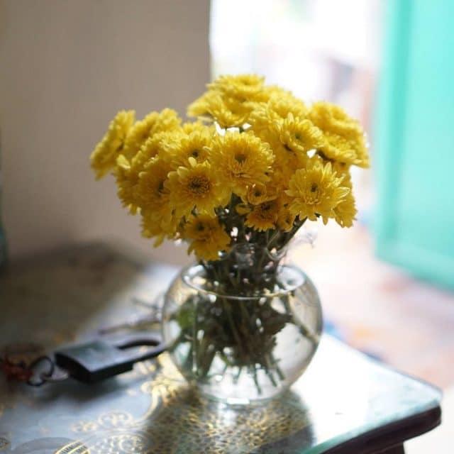 cách cắm hoa cúc để bàn thờ