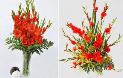 Tìm hiểu về cách chọn và cắm hoa lay ơn ngày Tết Kỷ Hợi 2019