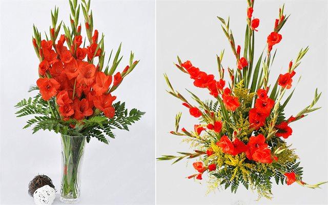 cách chọn và cắm hoa lay ơn ngày Tết