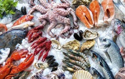 Mẹo hay chế biến hải sản tiết kiệm thời gian mà hiệu quả